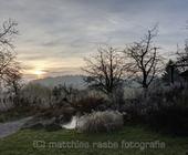 Abendlicher Garten am Bodensee mit Raureif