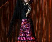 Flamenco im Delphi-Showpalast